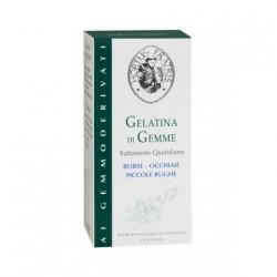 Hortus Fratris Gelatina di Gemme Paakių želė 20ml