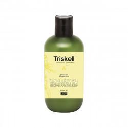 Triskell Botanical Treatment Energy Shampoo Energizuojantis šampūnas 300ml