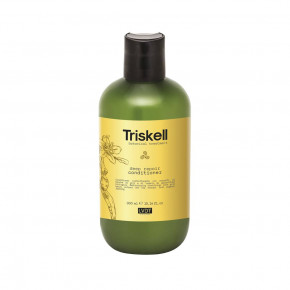 Triskell Botanical Treatment Deep Repair Conditioner Giliai atkuriantis kondicionierius 300ml