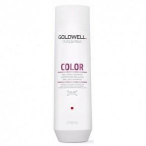 Goldwell Dualsenses Color šampūnas dažytiems plaukams 250ml