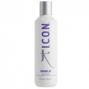 I.C.O.N. Shield Proteininė plaukų kaukė 250ml